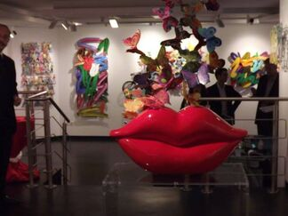 Flying Colors, installation view