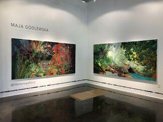 Maja Godlewska, The Ultimate Landscape, installation view