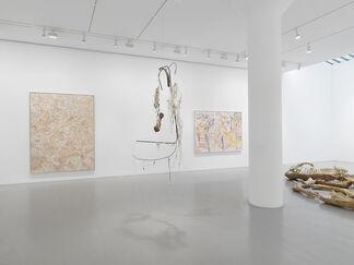 Nancy Graves, installation view