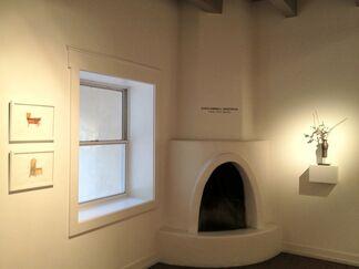 David Kimball Anderson   TRAVEL :ROME, NAMCHE, installation view