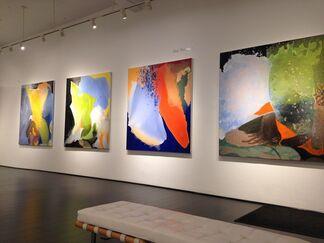 Yolanda Sánchez and Don Swanson, installation view
