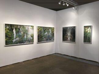 Galerie D'Este at Art Toronto 2015, installation view