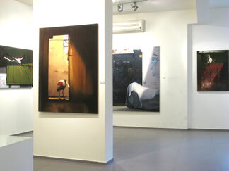 Private Ornithology, installation view