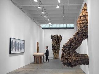 Ursula von Rydingsvard, installation view