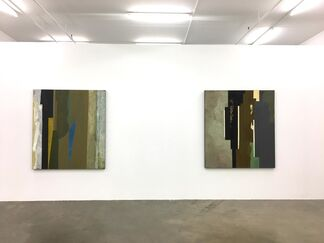 Otto Donald Rogers - Recent Work, installation view