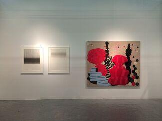 CYNTHIA-REEVES at Art Miami New York 2015, installation view