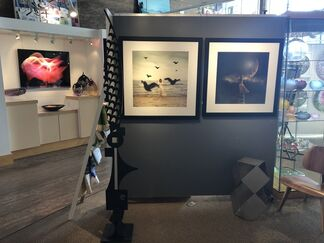 Captivated: a photography exhibition, installation view