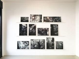Luzia Simons – Humboldt ist niemals da gewesen, installation view