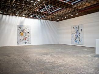 Secundino Hernández, installation view