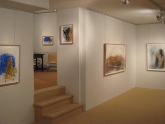Rolf Iseli - recent works, installation view