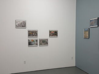 Adler Guerrier, installation view