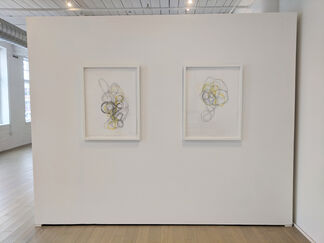 Alisa Dworsky: InVersion, installation view