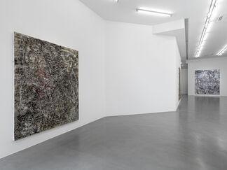 Garth Weiser, installation view