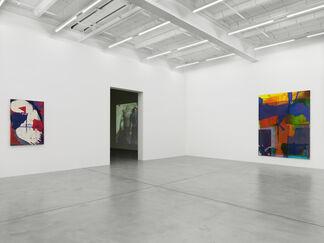 Alex Hubbard, Chemical Compulsion, installation view