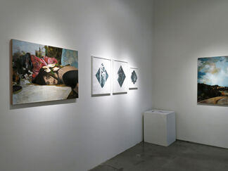 NATURE/MADE, installation view