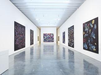 Jiri Georg Dokoupil: New Paintings, installation view