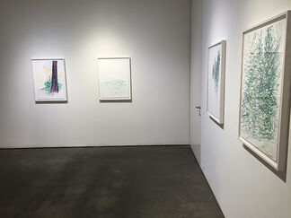 Sandy Walker - Stehekin Poems, installation view