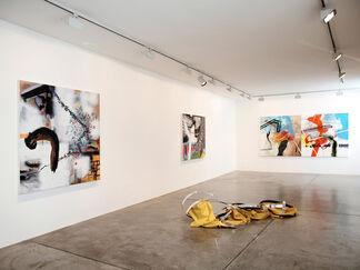 """Mauricio Gonzalez """"Incommensurability Studies"""", installation view"""