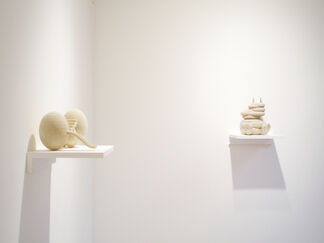 Sharon Engelstein - Blowjob, installation view