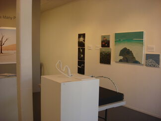 The Land Has Many Parts, installation view