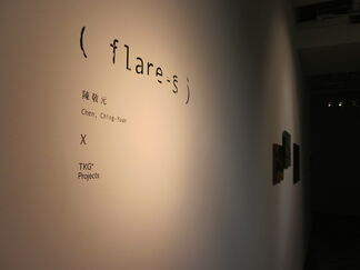 (flare-s), installation view
