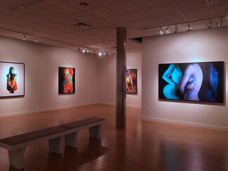 Cuerpos Pintados: Painted Bodies at the Museum of Art Deland, installation view