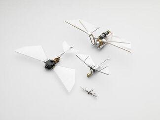 Marjetica Potrč – Micro Air Vehicles @ Der Würfel, installation view