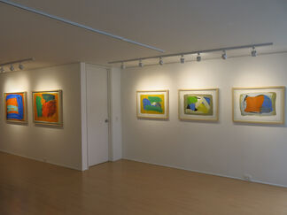 Immersions, installation view