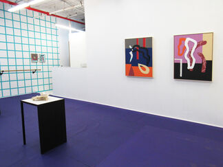 Fad Bodies, installation view