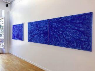 Color Lucida, installation view