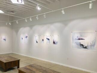 Janus, installation view