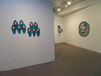 Sunyoung Seo: Affections, installation view