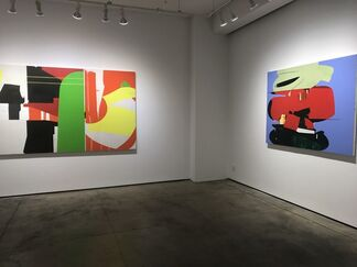 Suzanne Kammin: Magic Show, installation view