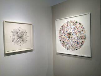 Snowbird, installation view