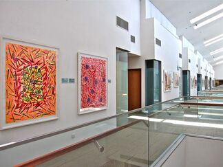 PACITA ABAD: SMU Collection, installation view