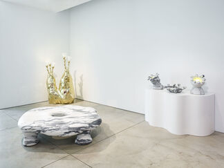 The Haas Brothers: Stonely Planet, installation view