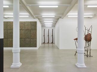 Giuseppe Penone: Fui, Sarò, Non Sono (I was, I will be, I am not), installation view