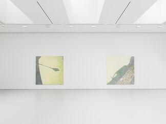 Luc Tuymans Le Mépris, installation view