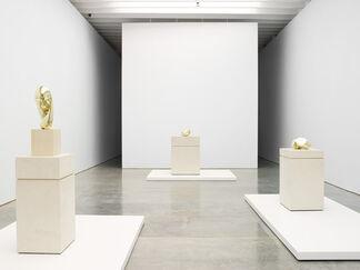 Brancusi in New York 1913 - 2013, installation view