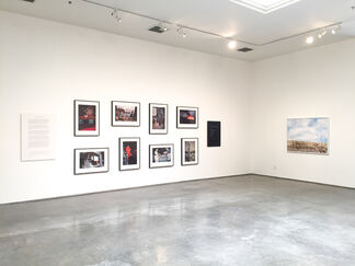 Selected Affinities, installation view