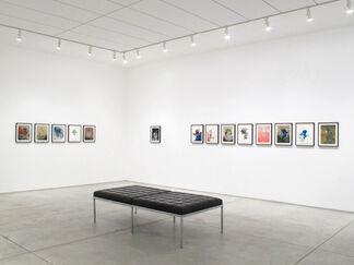 """Darren Waterston - """"Pavo"""", installation view"""