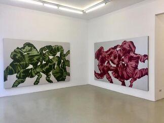 "Martin Pohl ""META MORPHOSE"", installation view"
