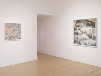 David Maisel: The Fall, installation view