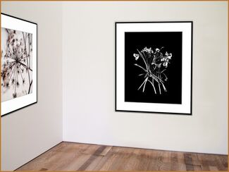 What Is Your Question?!, installation view