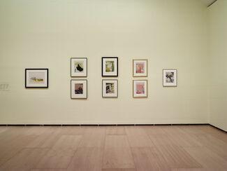 Paris, Fin de Siècle: Signac, Redon, Toulouse-Lautrec, and Their Contemporaries, installation view