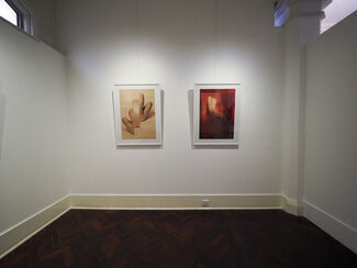 Myles Pedlar: Fragments of the Physical, installation view