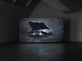 Sebastian Diaz Morales   Ficcionario, installation view