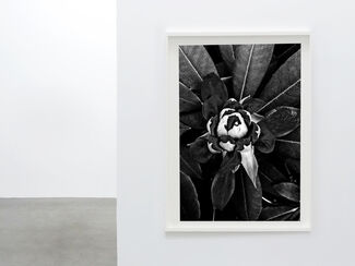 Spring 2015 at The Print Atelier, installation view