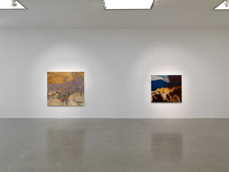 Liliane Tomasko: Vestige, installation view