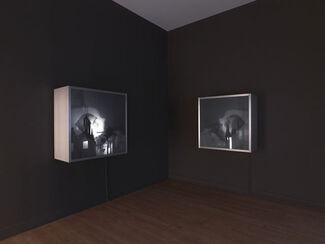 Won Ju Lim: Casting, installation view